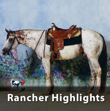 NAERIC - North American Equine Ranching Council Foals PMU